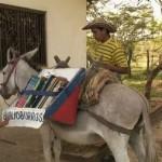 800px-biblioburro