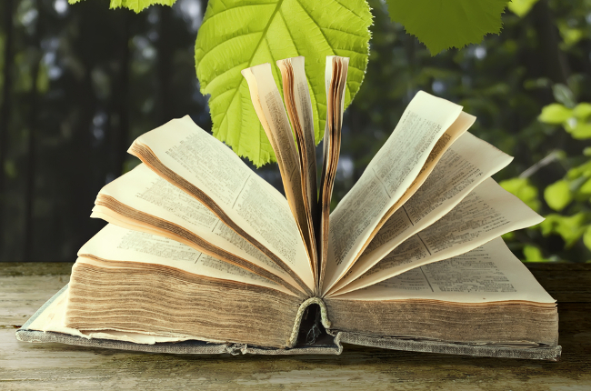 Come portare i libri in giardino