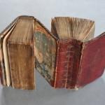 libro_a_due_facce