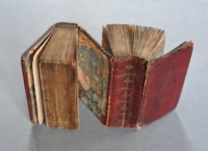 """Erik Kwakkel ha ribattezzato questa opera """"I gemelli siamesi"""", e mai nome fu più appropriato: due libri - prodotti fra il XVI e il XVII Secolo - con due copertine differenti e la stessa quarta di copertina."""