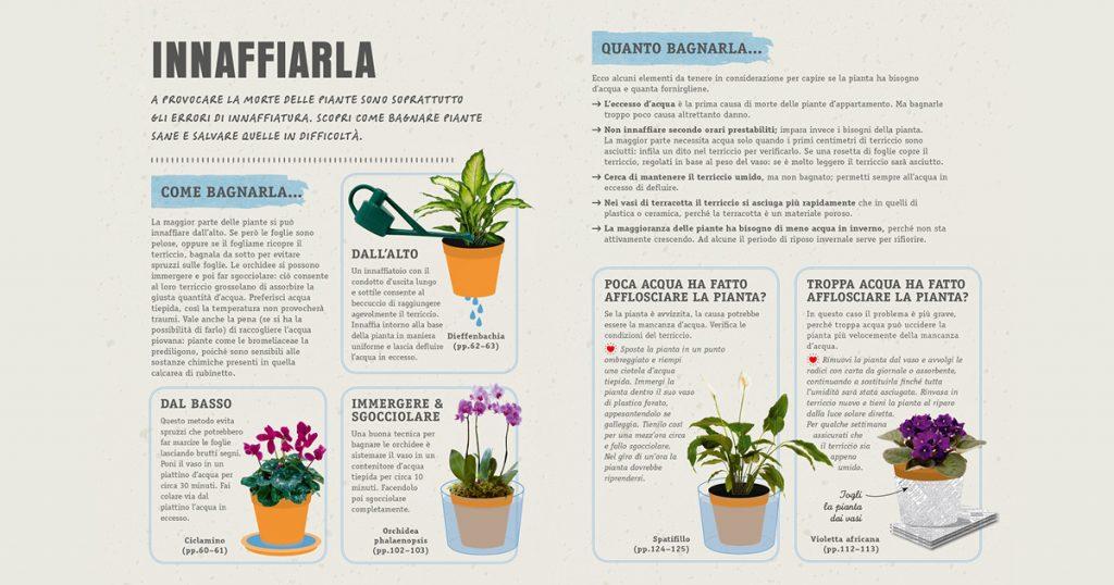 piante innaffiare