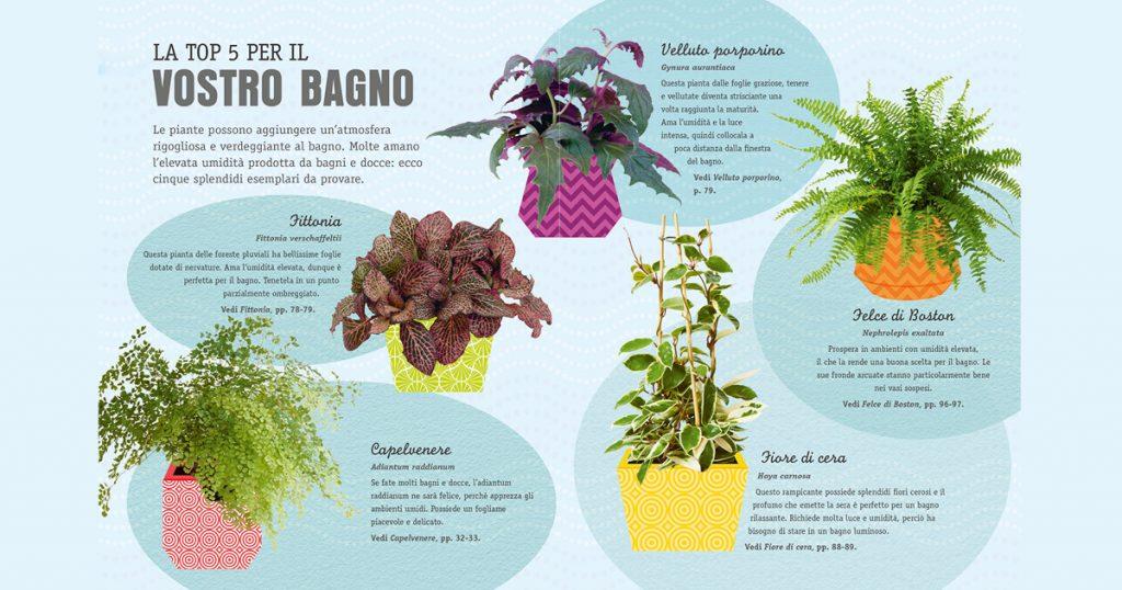 piante bagno